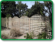 Trellis Fencing Example