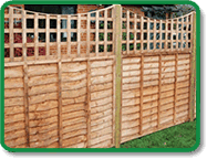 Trellis Fencing Top Accent Example
