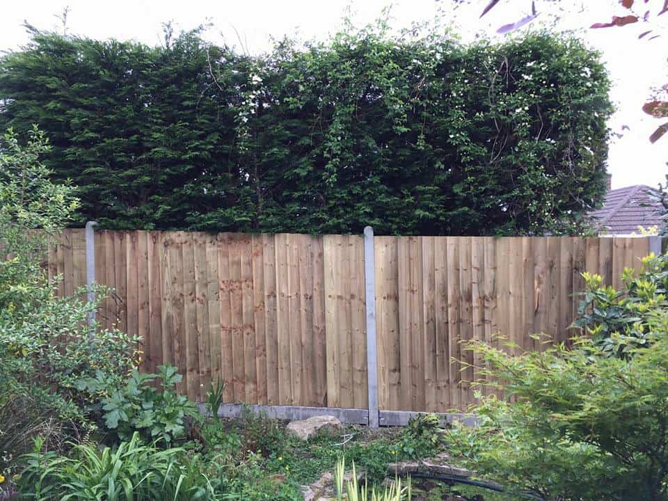 Closeboard fencing with concrete posts and gravel boards for a Southampton fencing project